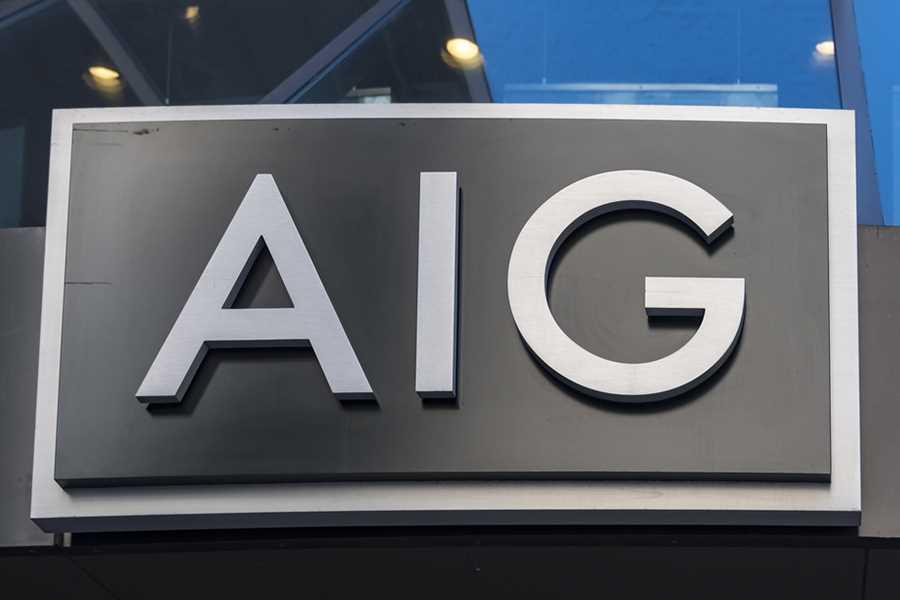 AIG CEO cites milestones, goals in speedy annual meeting