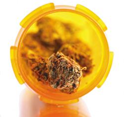 Medical marijuana should not get workers comp funding: Insurers
