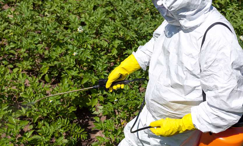 Environmental Protection Agency sued over suspended pesticide safety training farmworkers