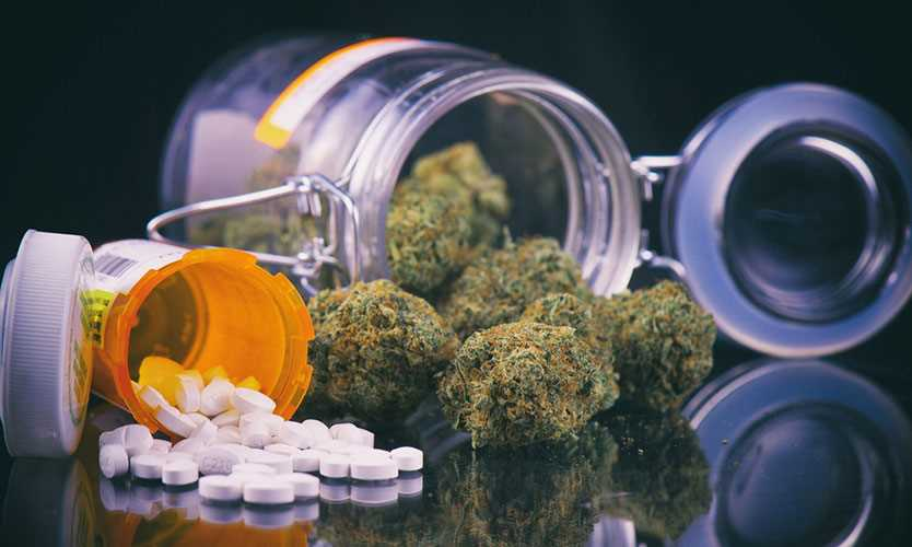 Medical marijuana vs. opioids