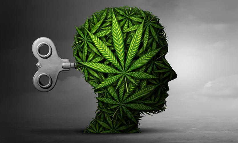 Cannabis use disorder
