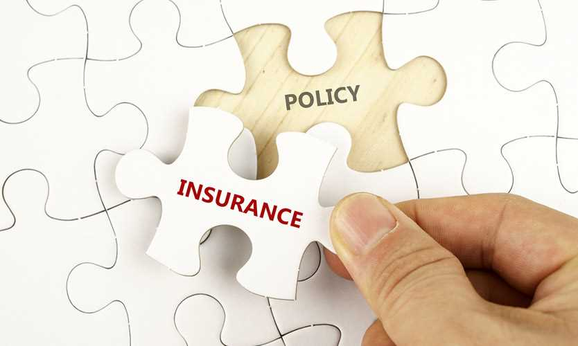 Everest insurance policy