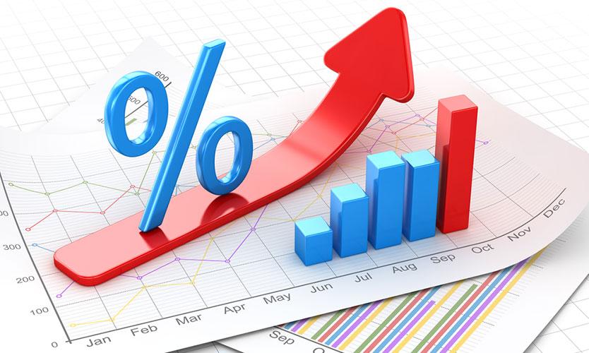 Revenue rises