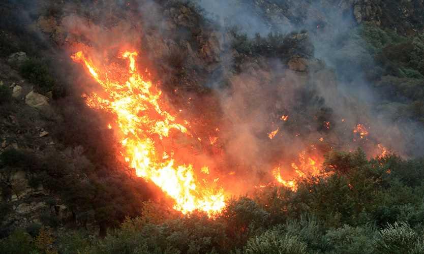 Malibu Canyon fire