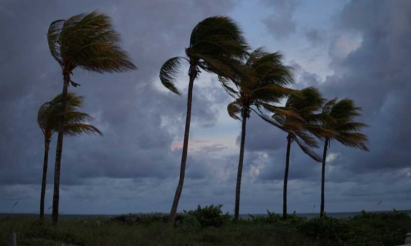 Urbanization, power outages fueled hurricane losses AIR Worldwide