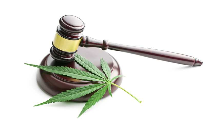 Marijuana insurers in holding pattern after Sessions memo