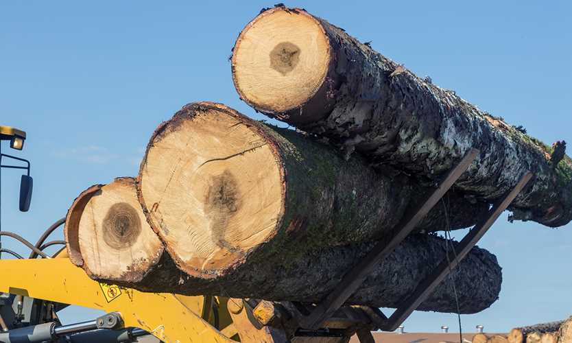 Inland marine policy offered for lumber industry