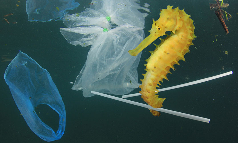 Plastic industry frets over plans to limit single-use items