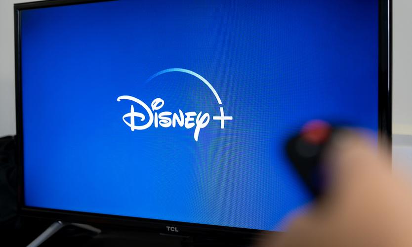 Fireman's Fund disputes Disney COVID-19 claims
