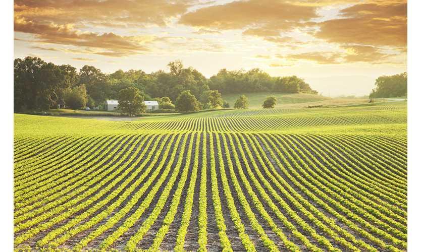 USI buys agribusiness broker